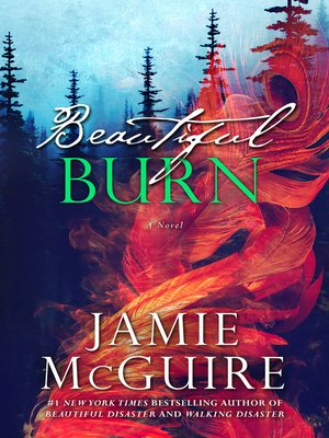 cover image of Beautiful Burn